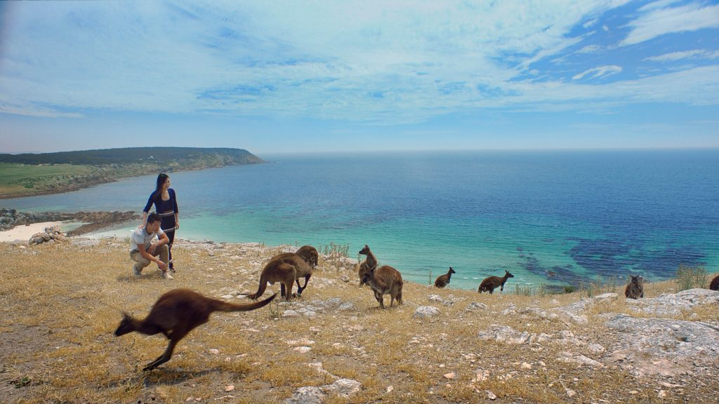 Kangroo Island